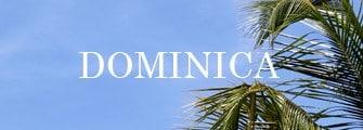 best wedding vendors in Dominica