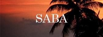 best wedding vendors in Saba