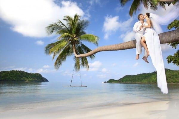 Couple in a coconut tree
